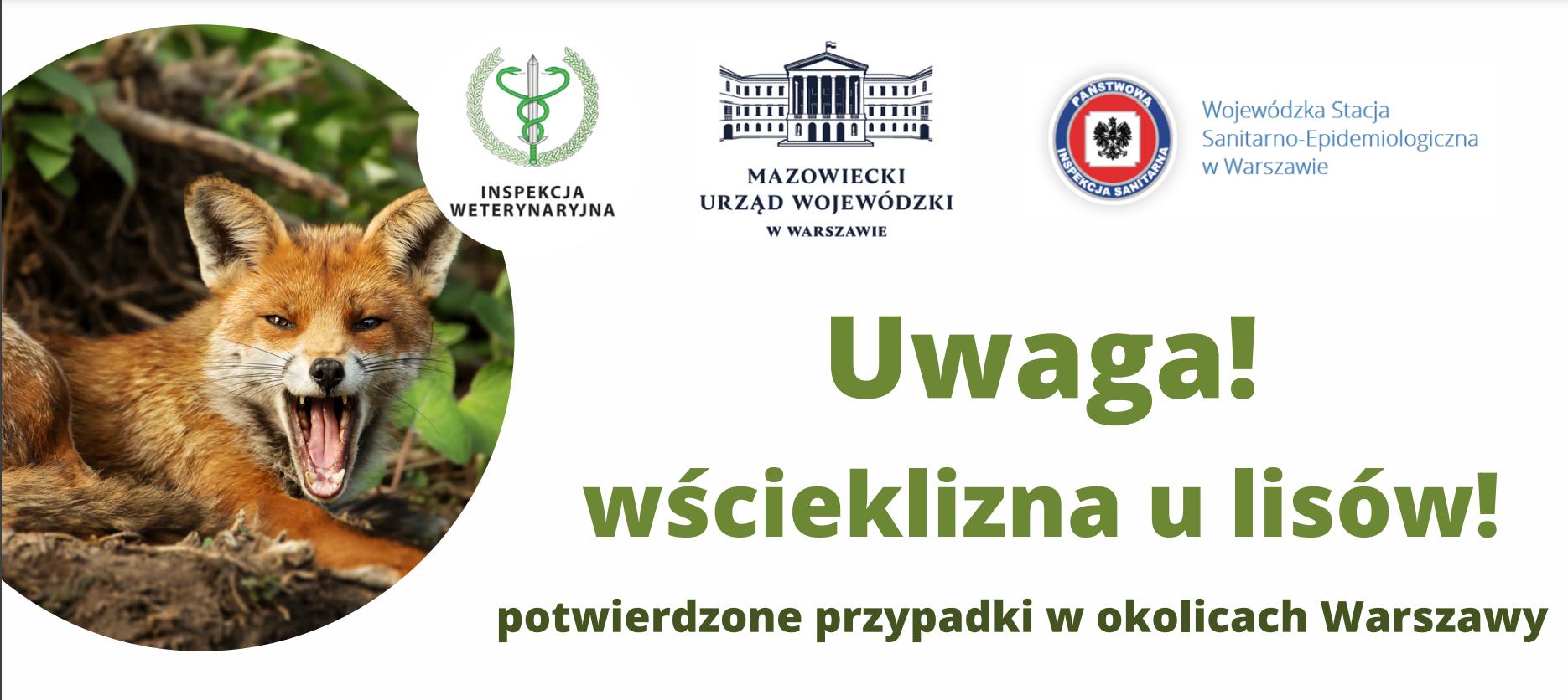 Wścieklizna u lisów wolno żyjących na terenie województwa mazowieckiego